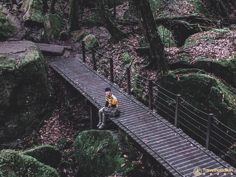 加里山登山步道木橋