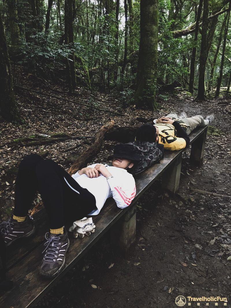 加里山登山步道休息平台