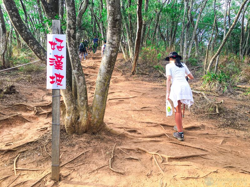 火炎山步道好漢坡