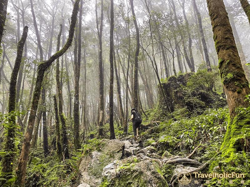松蘿湖步道